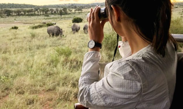 10 Safari travel tips to keep in mind