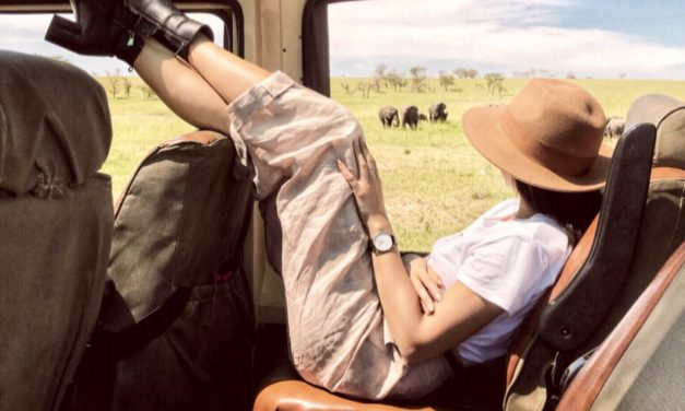 Safari adventures with Lemala
