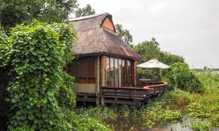 Royal Chundu River Lodge – Livingstone, Zambia